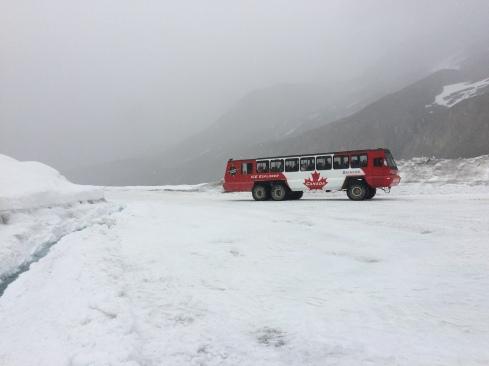 Columbia Icefield glacier walk
