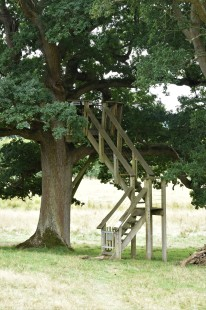 Viewing platform, Knepp