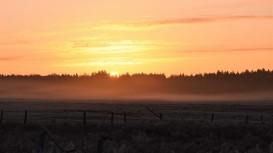 Naliboki Sunrise