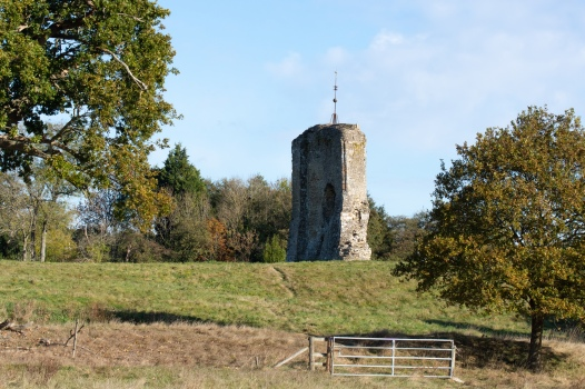 The ruins of Knepp Castle