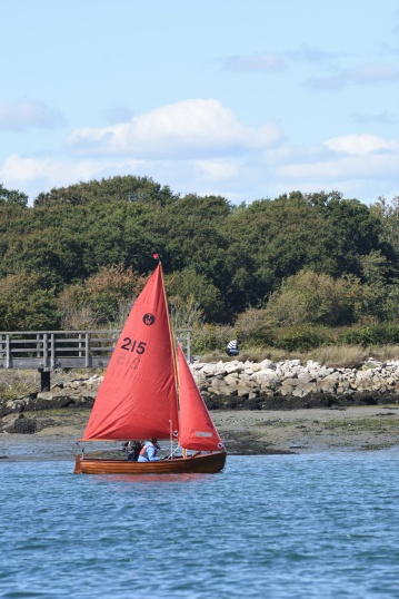 Sail boats in Chichester Harbour